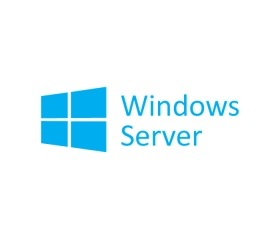 Windows Svr Std 2019 64bit HUN 1pk DSP OEI