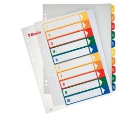 Esselte Regiszter, műanyag, A4 Maxi, áttetsző