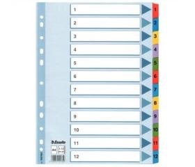 Esselte Regiszter, laminált karton A4, 1-12, Mylar