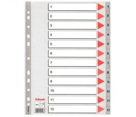 Esselte Regiszter, műanyag, A4, 1-12, szürke