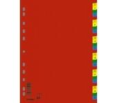 Donau Regiszter, műanyag, A4, 1-31, színes